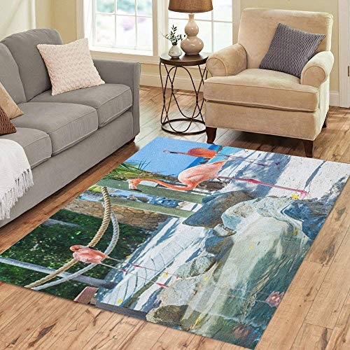 Semtomn Area Rug 5' X 7' Blue Flamingo and Iguana Beach Aruba Private Island Green Home Decor Collection Floor Rugs Carpet for Living Room Bedroom Dining Room Aruba Blue Area Rug