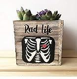 Rad Life, Radiologist Gift, Succulent Planter