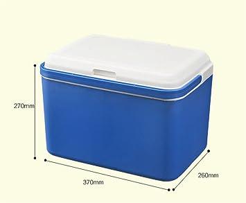 BIO FAMILY Mini Nevera Refrigerador del Coche Portátil 13L Coche ...