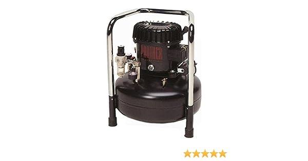 Compresor silencioso en bano de aceite WERTHER Panther 50/24 AL: Amazon.es: Hogar