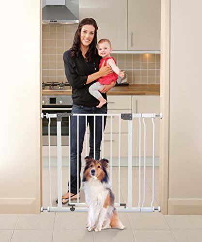 Top 10 Dog Barrier For A Home
