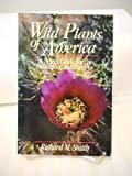 Wild Plants of America, Richard M. Smith, 0471620815