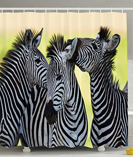 Ambesonne Wildlife Animal Decor Collection, Zebras Safari Wild Nature Picture Print, Polyester Fabric Bathroom Shower Curtain Set with -