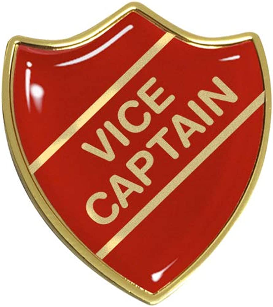 Vice Captain Gel Domed School Shield Badge