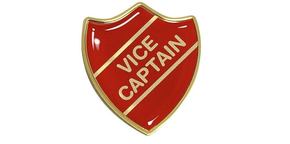 10x Vice Captain Gel Domed School Shield Badges