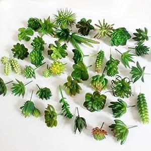Dutch Brook 5Pcs Different Succulents Artificial Cactus Plants for Office Home Garden Decor (Sent Randomly)