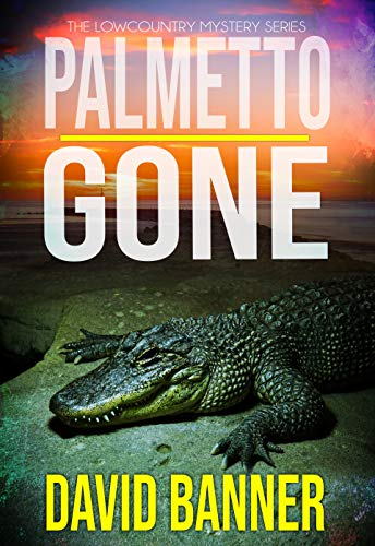 Palmetto Gone: A Lowcountry Seaside Mystery (Lowcountry Mystery Series Book 2)