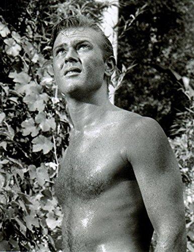 Martin Milner Shirtless 8x10 Photo #R0381