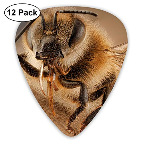 HAIDILUN Bored Honey Badger Guitar Picks Plectrums Acoustic Guitar Ukulele Picks 0.46 Mm, 0.73mm, 0.96 Mm,12 - Pick Pick Guitar Honey Grip