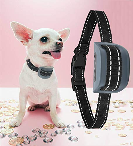 MASBRILL Rechargeable Bark Collar, Stop Barking by Harmless Shock/Vibration/ Sound, Three Modes No Barking Control Anti Bark Devices, Waterproof for Large, Medium, Small Breed (Grey (8-55lbs))