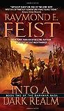 Into a Dark Realm (Darkwar Saga Book 2)