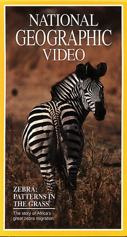 (National Geographic Video: Zebra: Patterns in the Grass [VHS])