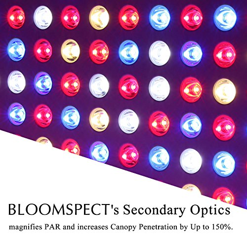 BLOOMSPECT 600W LED Grow Light for Indoor Greenhouse Hydroponic Plants Veg Bloom Switches Daisy Chain by BLOOMSPECT (Image #4)