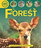 Life Cycles: Forest, Sean Callery, 0753467410
