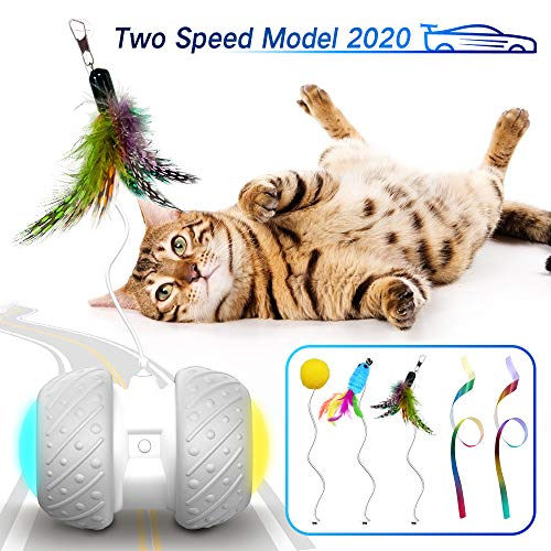 k-berho Cat Toys Interactive, Cat Toys for Indoor with Feather,Ball,Mouse and 2 Color Ribbons,Automatic Cat Toy with…