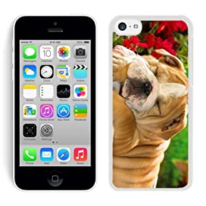 Personalize offerings Sleeping Christmas Dog White Hard Shell Iphone 5c Plastic Phone Case