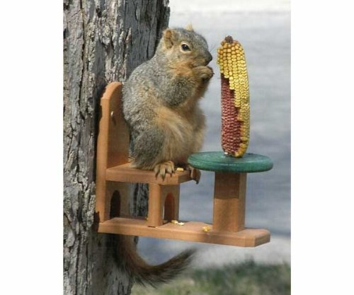 Songbird Essentials SE526 Recycled Poly Squirrel Feeder Table & Chair (Set of 1)
