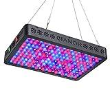 Gianor 2000W LED Grow Light, Full Spectrum