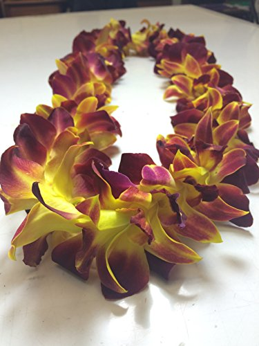 Hawaiian Leis Orchid Fresh - Fresh Flower Lei Tinted (Yellow)