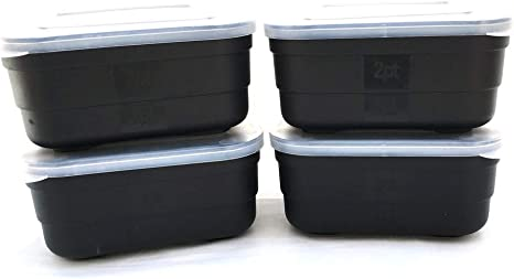 BZS Cajas de Cebo - Cajas de Gusanos para Pesca (1 Pint, Set of 4): Amazon.es: Deportes y aire libre