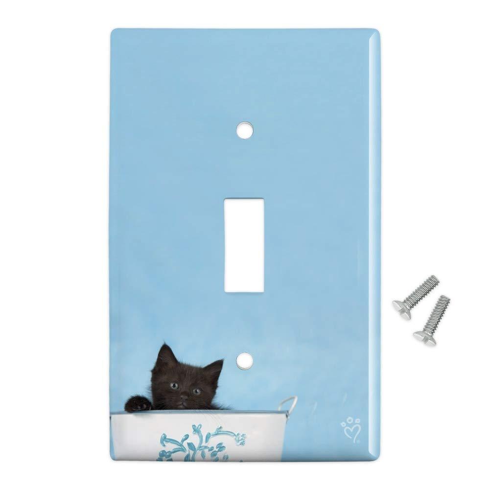 Graphics and More Cubo de plástico con diseño de Gato y Gatito Negro para decoración de la Pared: Amazon.es: Juguetes y juegos