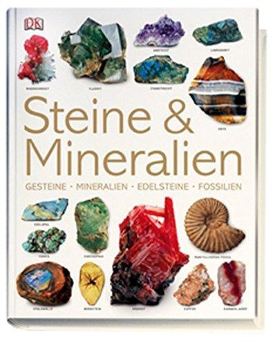 Steine & Mineralien: Gesteine, Mineralien, Edelsteine, Fossilien
