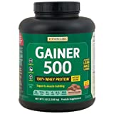 Fitness Labs Gainer 500, 50g Protein 100% from Whey, Natural Flavors and Sweeteners (Chocolate)