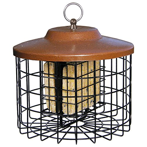 51ZEnHYuiyL - Squirrel-X Squirrel Proof Suet Bird Feeder, 2 Suet Cake Capacity, Brown