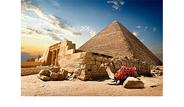 7x5FT Vinyl Backdrop Photography Background The Great Pyramid Camel with Luggage Giza Egypt Golden Desert Egyptian Pyramids Backdrop Photo Shooting Studio Props Personal Portrait