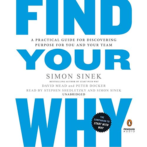 Pdf Business Find Your Why: A Practical Guide for Discovering Purpose for You and Your Team