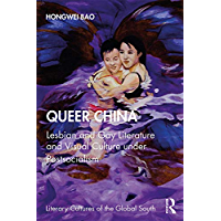 Queer China: Lesbian and Gay Literature and Visual Culture under Postsocialism (Literary Cultures of the Global South) book cover