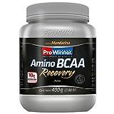 Amino Bcaa Recovery ProWinner Mandarina 400 g. Aminos de la cadena Ramificada (L Valina, L-Leucina, L Isoleucina, Adicionado con L Glutamina y HMB