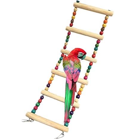 Namgiy Jaula para loro, juguetes de escalada, juguetes para ...