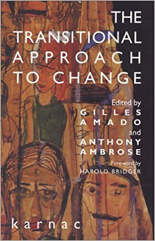 The Transitional Approach to Change (The Harold Bridger Transitional Series)