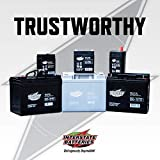 Interstate Batteries 12V 8AH SLA battery, .187
