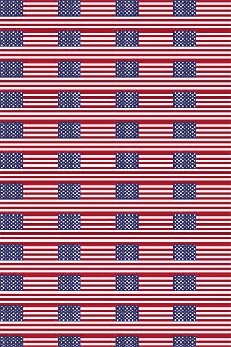 USA Flag Heat Transfer Vinyl for T-Shirt Sleeve Silhouette HTV for Clothing - Free Bonus Transfer Mask Included Premium Heat Transfer Vinyl -