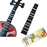 FineFun Violin Finger Guide /Fingerboard Sticker guide Label Finger Chart For Size 4/4,3/4 ,2/1,4/1,8/1,10/1 (4/4)