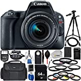 Canon EOS Rebel SL2 w/EF-S 18-55mm IS STM Lens (Black) - International Version (No Warranty) Includes 64GB SD Memory Card + High Speed Card Reader + 3 Piece Filter Kit + Digital Slave Flash & More!