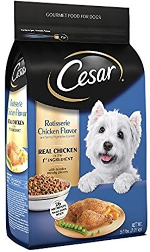 51ZFWahHhOL - CESAR Rotisserie Chicken Flavor With Spring Vegetables Dry Dog Food 5 Pounds