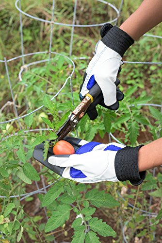 Simple Gardening Gloves for Women and Men, Medium
