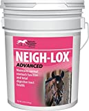 KENTUCKY PERFORMANCE PROD Neigh-Lox Advanced, 20 lb