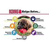 KONG Small Puppy Teething Toy - Colors May Vary