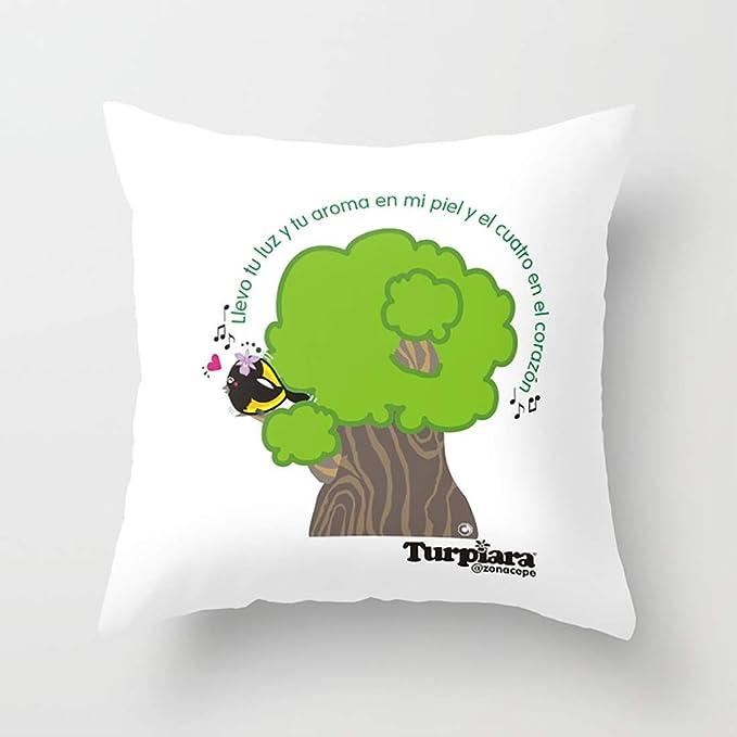 Amazon.com: Throw Pillow Covers Llevo tu luz y tu Aroma en ...