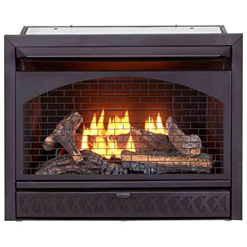 ProCom FBNSD28T Ventless Dual Fuel Firebox Insert