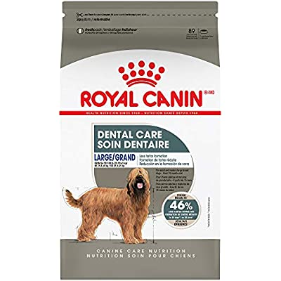 Royal Canin Dental Care Dry Food for Large Dogs