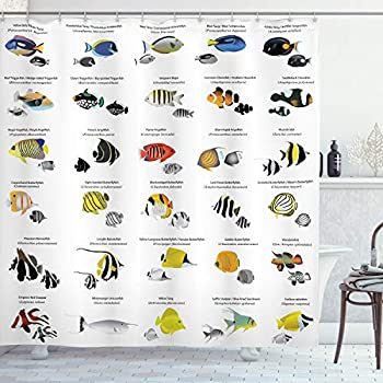 Ambesonne Ocean Shower Curtain, Illustration of Different Fish Species Underwater Aquatic Educational Picture, Cloth Fabric Bathroom Decor Set with Hooks, 84