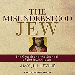 The Misunderstood Jew Audiobook