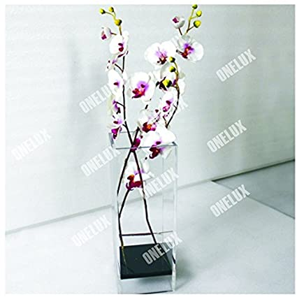Amazon Perfect Clear Large Acrylic Square Vaselucite Floral