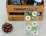Real Flowers Phone Case for Iphone 5c Case