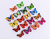 Software : Napoo 10 Pcs Butterfly LED Lights 3D Wall Stickers For House Decoration Bedroom